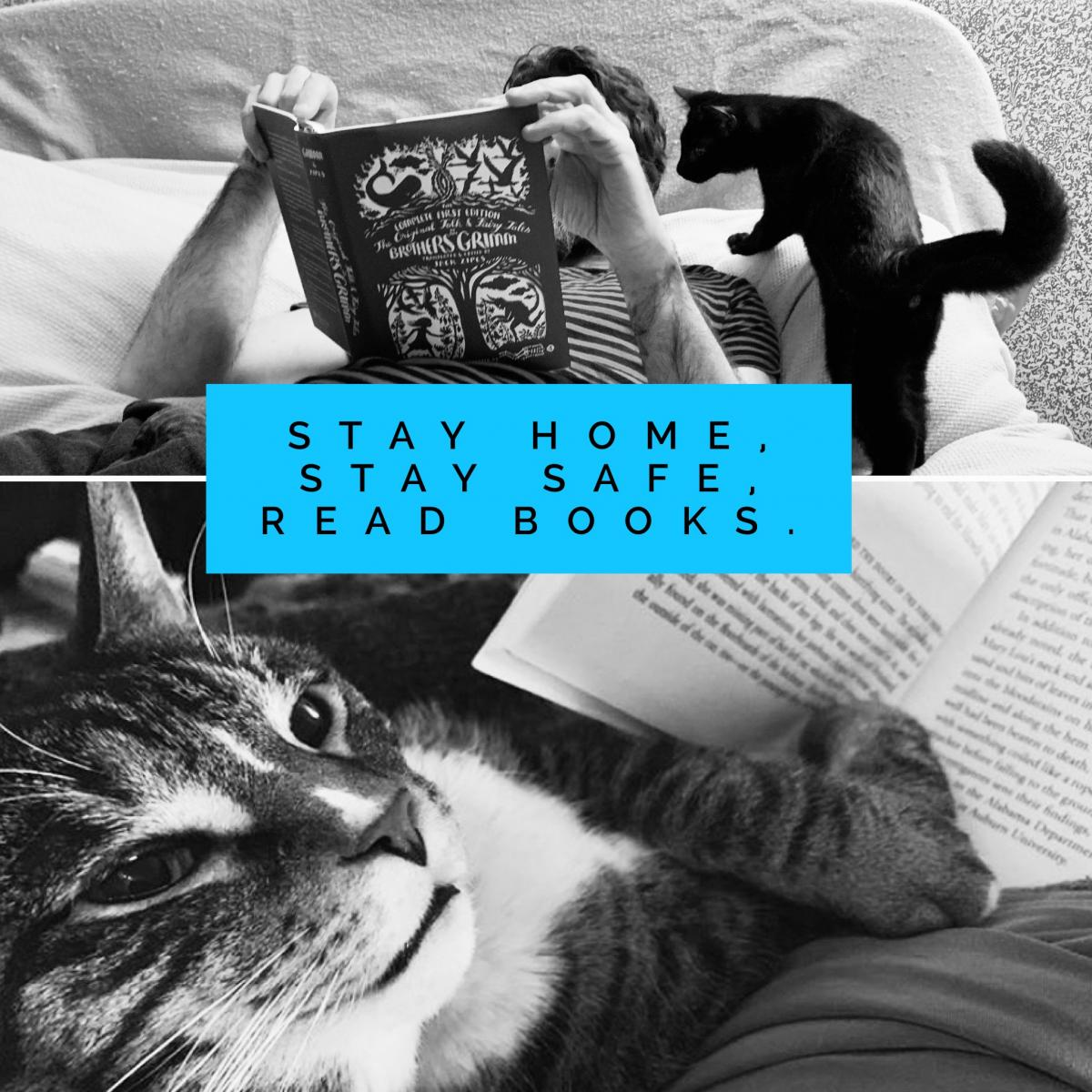 Cats reading books with text Stay Home Stay Safe Read Books
